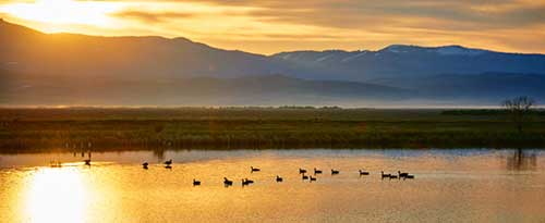 Bear Lake Wildlife Refuge, Near Montpelier, Idaho