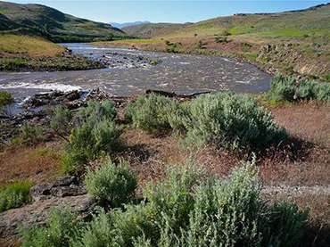 Weiser River near Midvale, Idaho